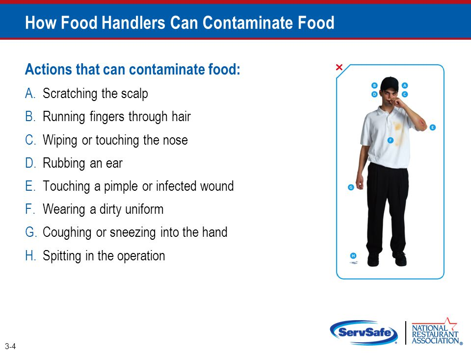 Actions that can contaminate food: A.Scratching the scalp B.Running fingers through hair C.Wiping or touching the nose D.Rubbing an ear E.Touching a p