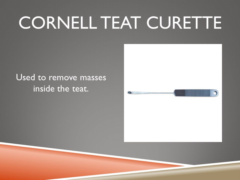 CORNELL TEAT CURETTE Used to remove masses inside the teat.