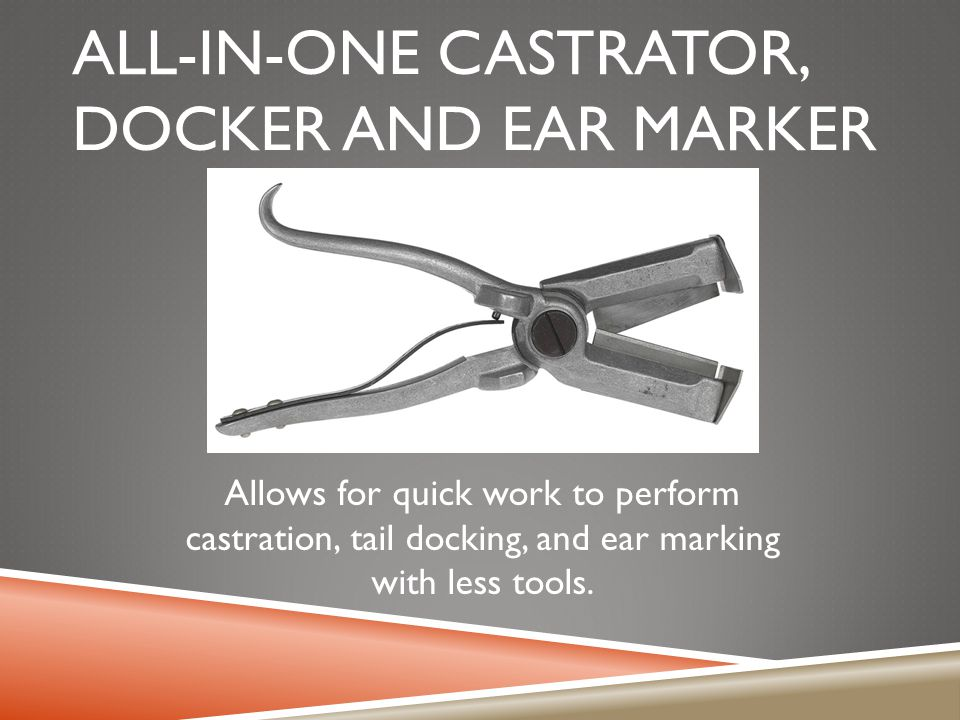 ALL-IN-ONE CASTRATOR, DOCKER AND EAR MARKER Allows for quick work to perform castration, tail docking, and ear marking with less tools.