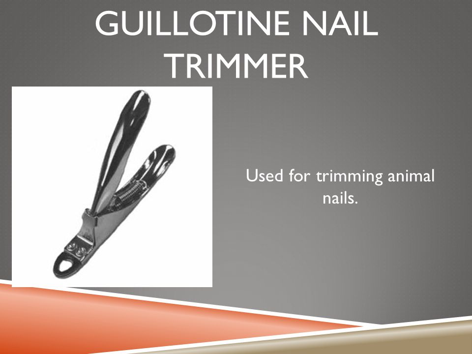 GUILLOTINE NAIL TRIMMER Used for trimming animal nails.