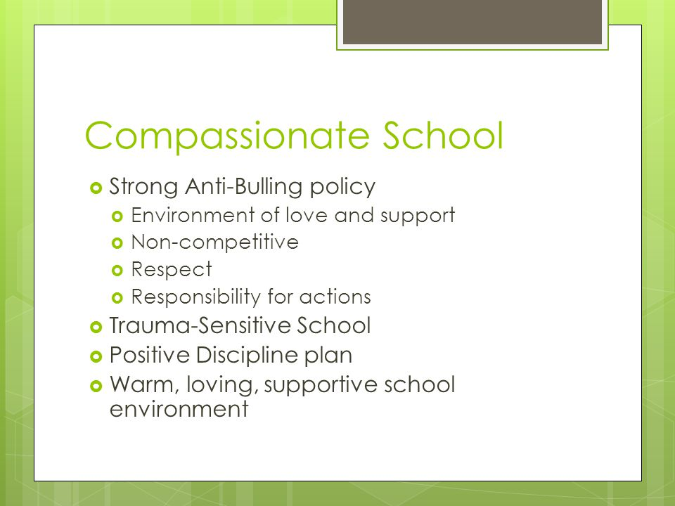 Compassionate School  Strong Anti-Bulling policy  Environment of love and support  Non-competitive  Respect  Responsibility for actions  Trauma-Sensitive School  Positive Discipline plan  Warm, loving, supportive school environment