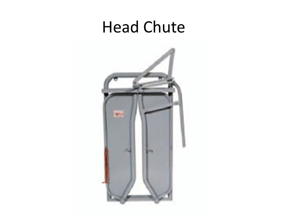Head Chute