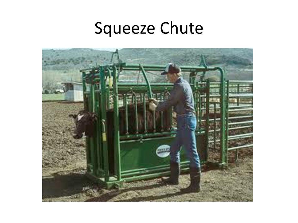 Squeeze Chute