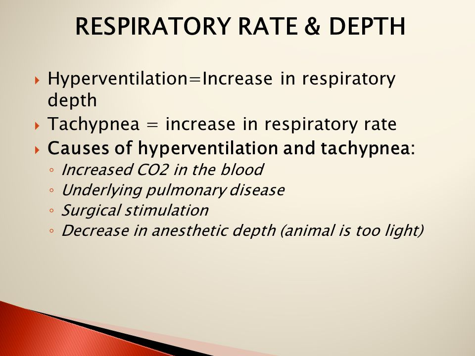RESPIRATORY RATE & DEPTH  Hyperventilation=Increase in respiratory depth  Tachypnea = increase in respiratory rate  Causes of hyperventilation and tachypnea: ◦ Increased CO2 in the blood ◦ Underlying pulmonary disease ◦ Surgical stimulation ◦ Decrease in anesthetic depth (animal is too light)