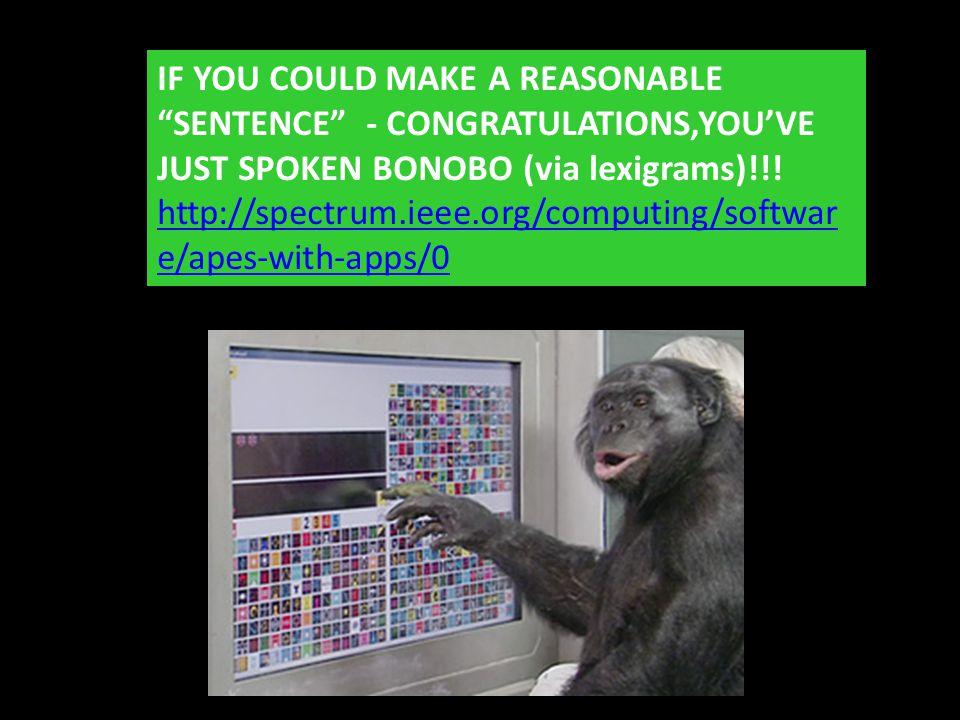 IF YOU COULD MAKE A REASONABLE SENTENCE - CONGRATULATIONS,YOU'VE JUST SPOKEN BONOBO (via lexigrams)!!.
