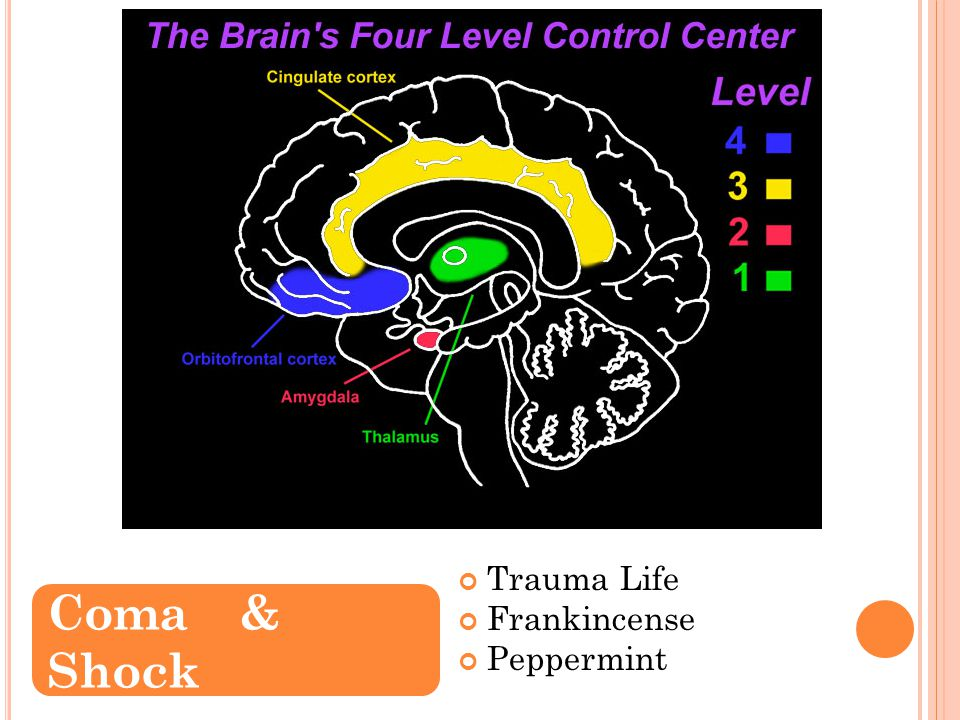 Trauma Life Frankincense Peppermint Coma& Shock T RAUMA