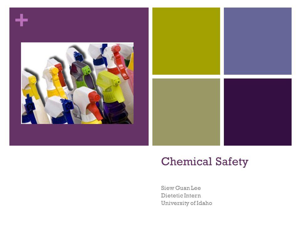 + Chemical Safety Siew Guan Lee Dietetic Intern University of Idaho