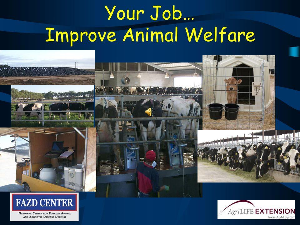 Report Sick animals Suspicious activity or people Unusual events