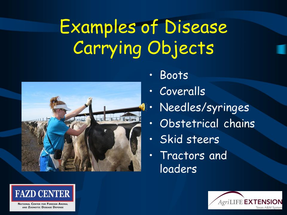 How Does Disease Spread.