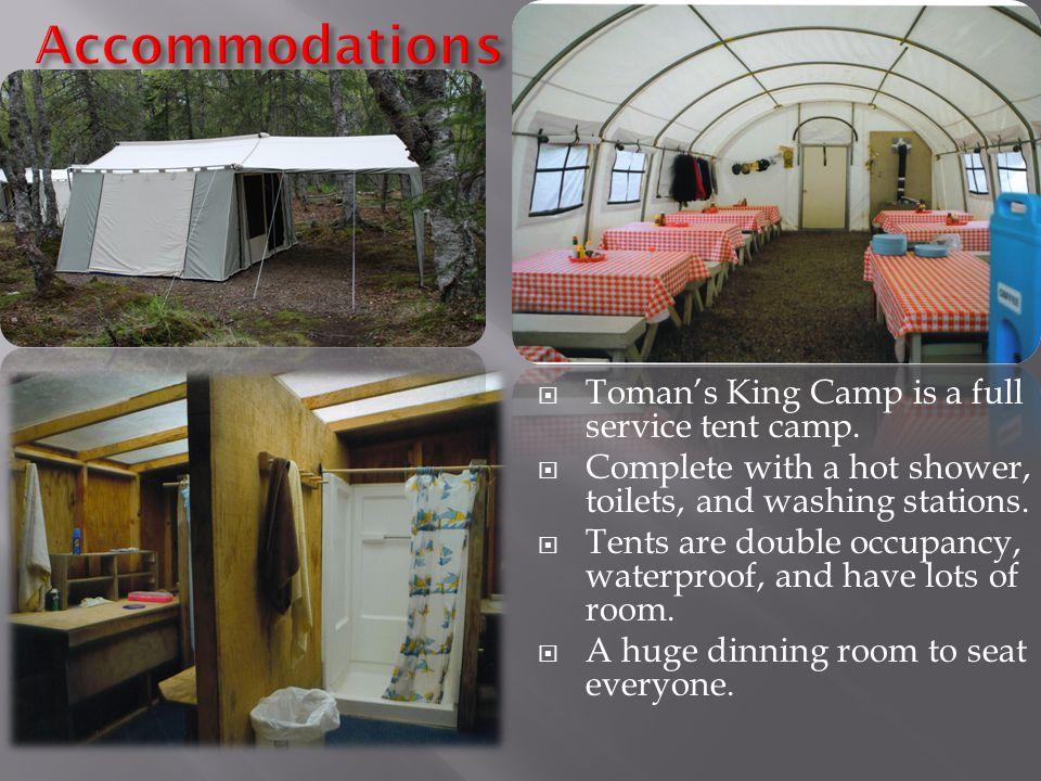  Toman's King Camp is a full service tent camp.