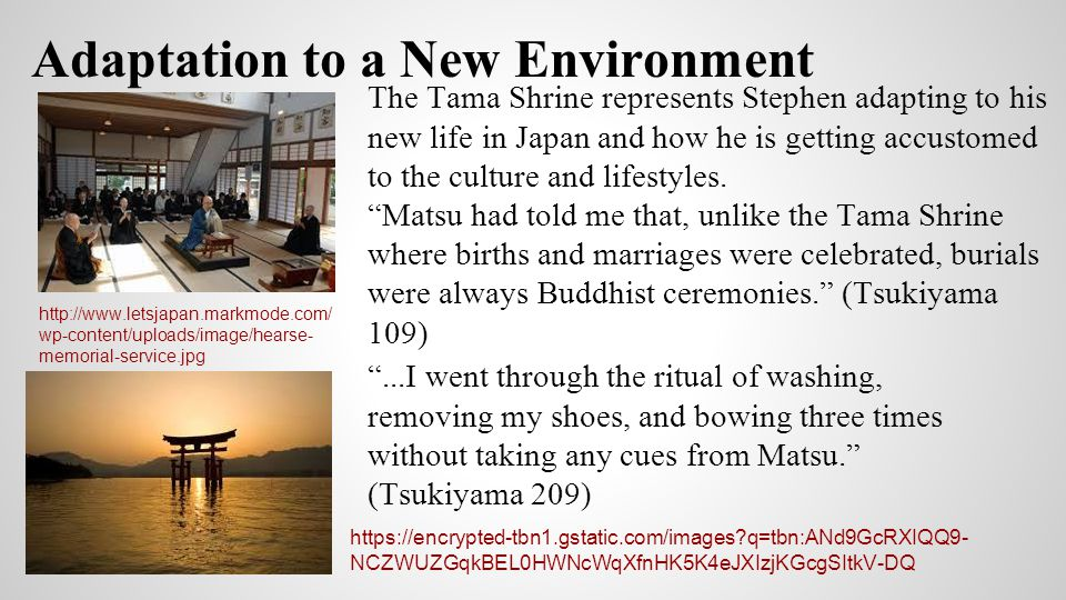 Adaptation to a New Environment http://www.letsjapan.markmode.com/ wp-content/uploads/image/hearse- memorial-service.jpg The Tama Shrine represents St
