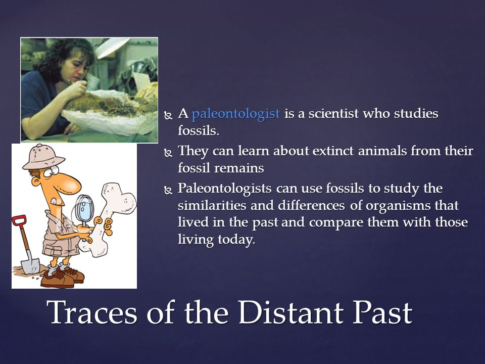  A paleontologist is a scientist who studies fossils.  They can learn about extinct animals from their fossil remains  Paleontologists can use foss