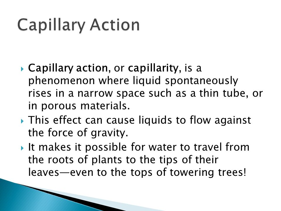  Capillary action, or capillarity, is a phenomenon where liquid spontaneously rises in a narrow space such as a thin tube, or in porous materials.
