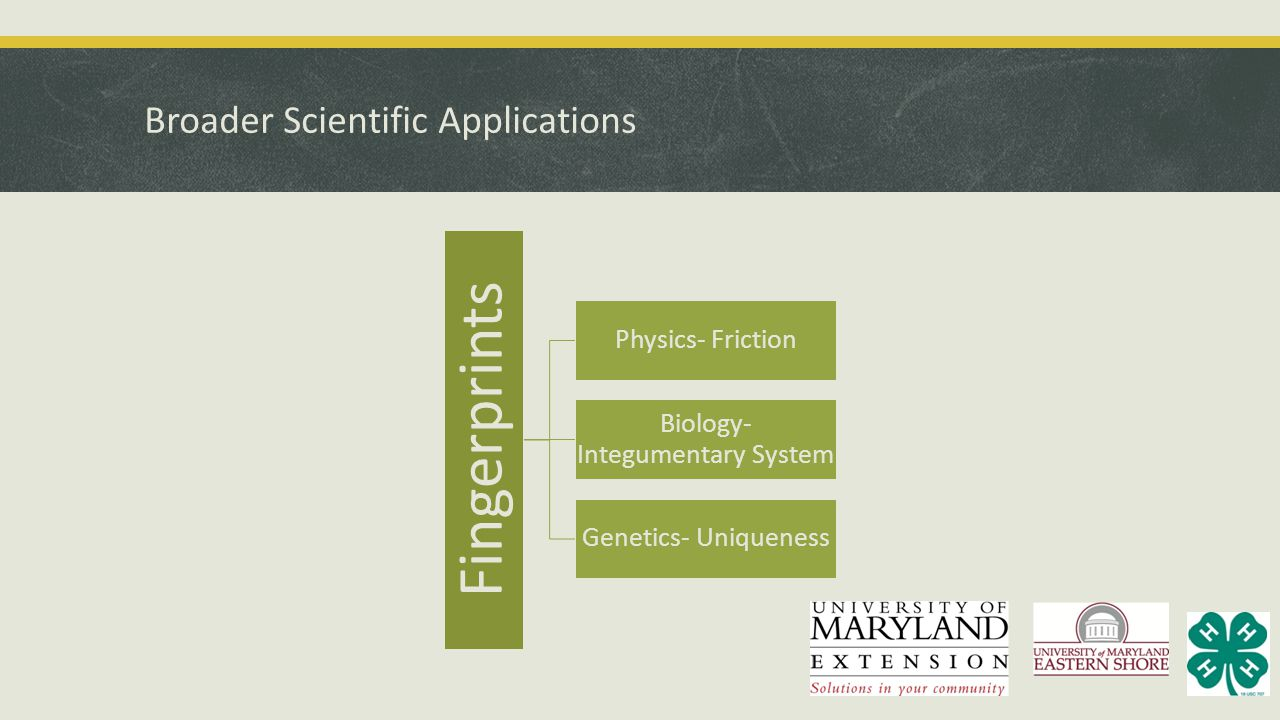 Broader Scientific Applications Fingerprints Physics- Friction Biology- Integumentary System Genetics- Uniqueness