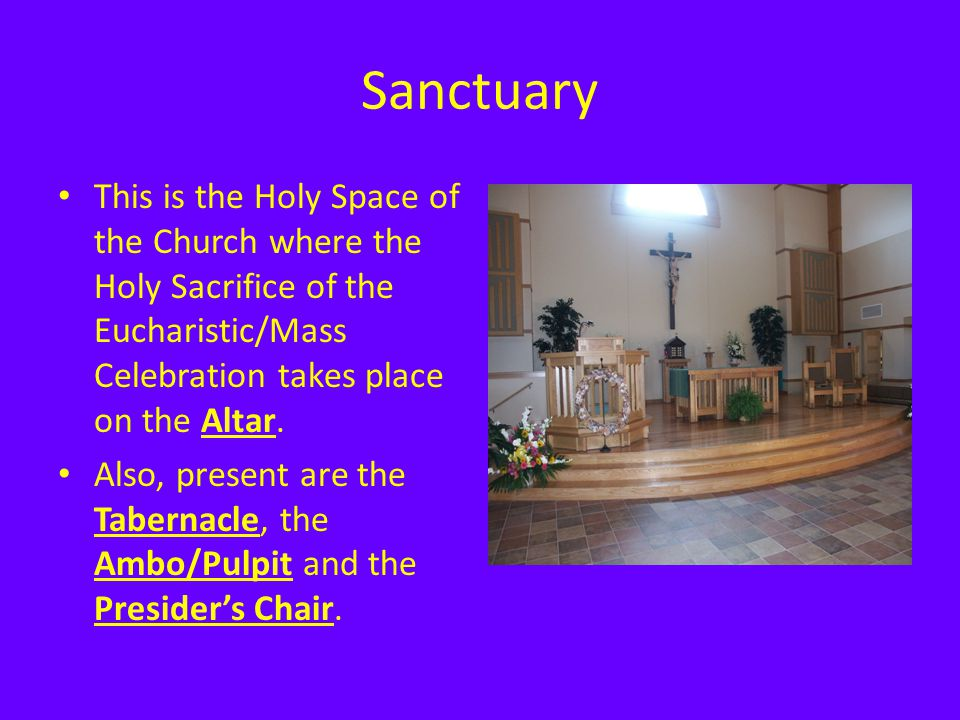 Sanctuary This is the Holy Space of the Church where the Holy Sacrifice of the Eucharistic/Mass Celebration takes place on the Altar. Also, present ar