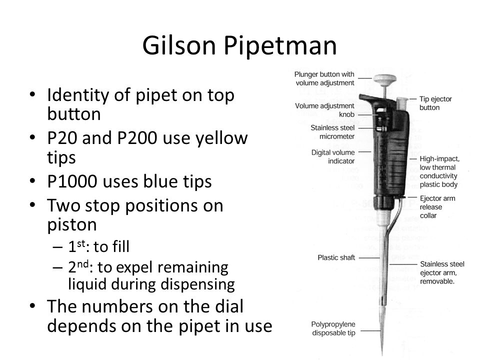 Gilson Pipetman Identity of pipet on top button P20 and P200 use yellow tips P1000 uses blue tips Two stop positions on piston – 1 st : to fill – 2 nd