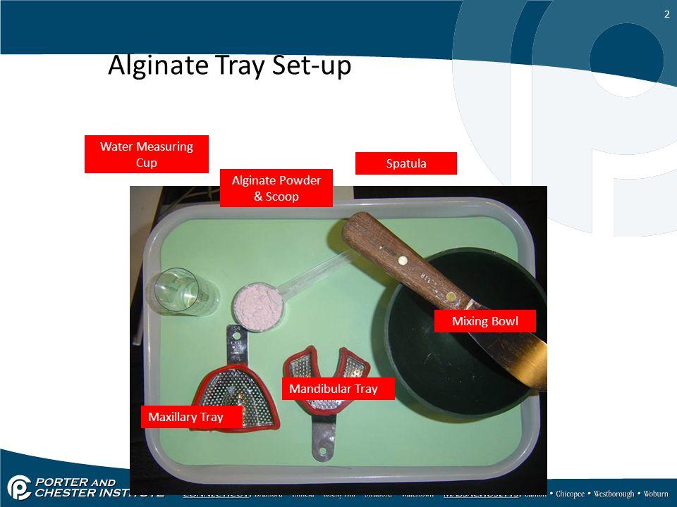 2 Alginate Tray Set-up Maxillary Tray Spatula Mixing Bowl Mandibular Tray Water Measuring Cup Alginate Powder & Scoop