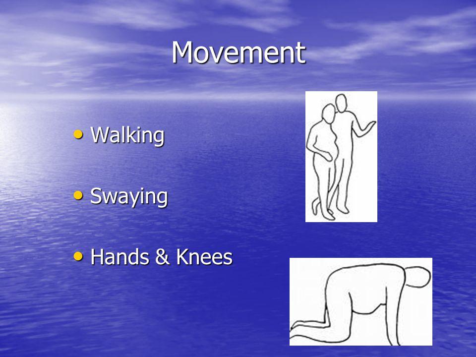 Movement Walking Walking Swaying Swaying Hands & Knees Hands & Knees