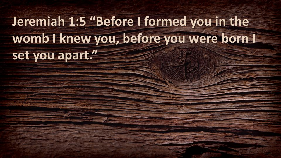 "Jeremiah 1:5 ""Before I formed you in the womb I knew you, before you were born I set you apart."""