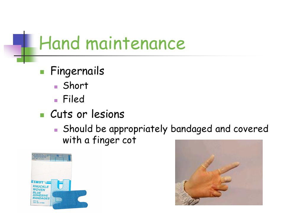 Hand maintenance Fingernails Short Filed Cuts or lesions Should be appropriately bandaged and covered with a finger cot