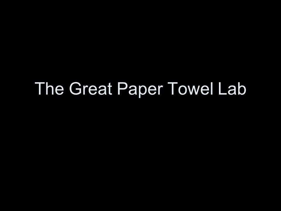 The Great Paper Towel Lab