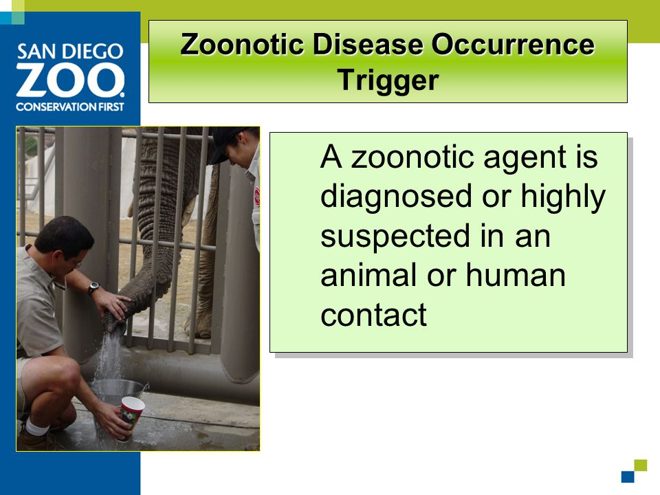 Zoonotic Disease Occurrence Zoonotic Disease Occurrence Trigger A zoonotic agent is diagnosed or highly suspected in an animal or human contact