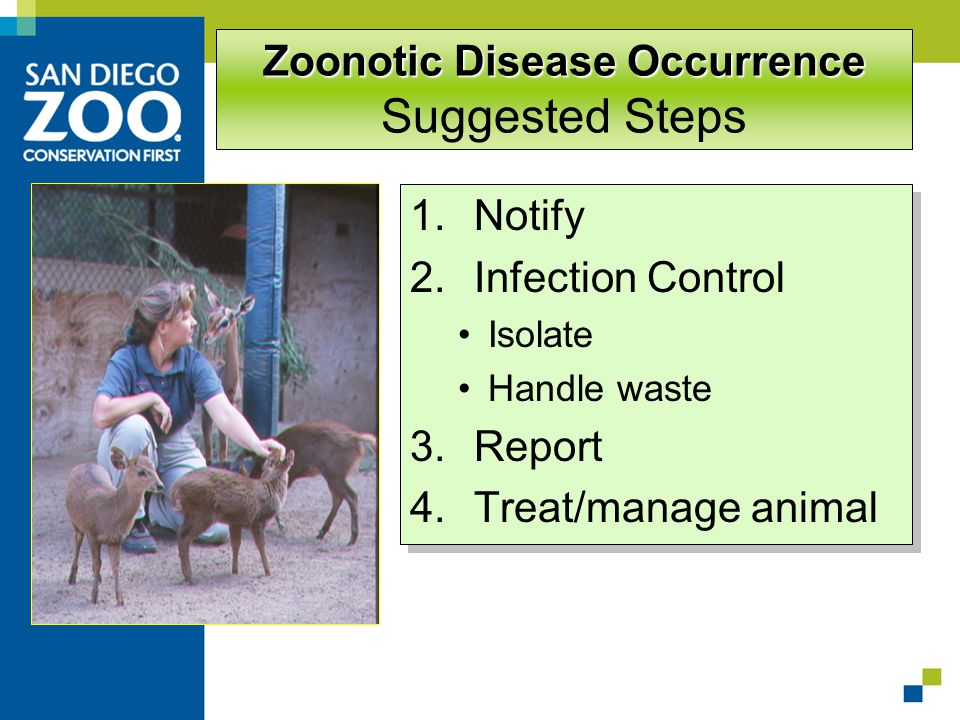Zoonotic Disease Occurrence Zoonotic Disease Occurrence Suggested Steps 1.Notify 2.Infection Control Isolate Handle waste 3.Report 4.Treat/manage animal 1.Notify 2.Infection Control Isolate Handle waste 3.Report 4.Treat/manage animal