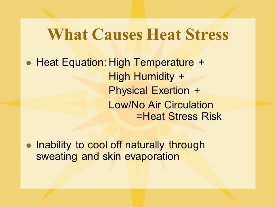 What Causes Heat Stress Heat Equation:High Temperature + High Humidity + Physical Exertion + Low/No Air Circulation =Heat Stress Risk Inability to cool off naturally through sweating and skin evaporation