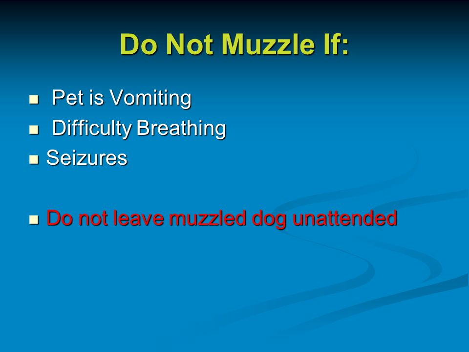 Do Not Muzzle If: Pet is Vomiting Pet is Vomiting Difficulty Breathing Difficulty Breathing Seizures Seizures Do not leave muzzled dog unattended Do not leave muzzled dog unattended