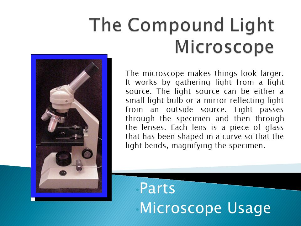 Parts Microscope Usage The microscope makes things look larger.