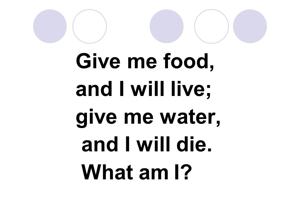 Give me food, and I will live; give me water, and I will die. What am I