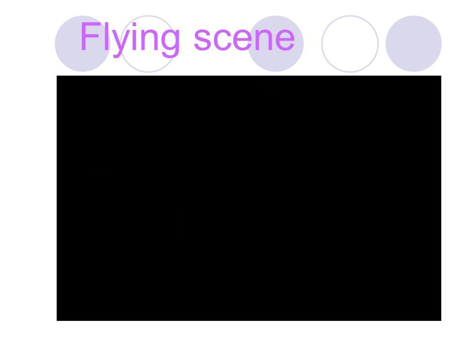 Flying scene