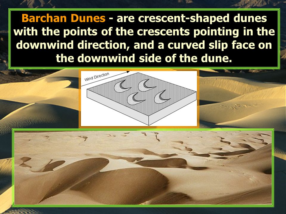 Barchan Dunes - are crescent-shaped dunes with the points of the crescents pointing in the downwind direction, and a curved slip face on the downwind
