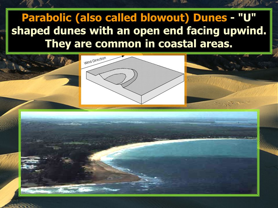 Parabolic (also called blowout) Dunes -