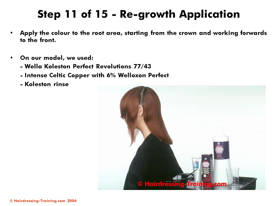 © Hairdressing-Training.com 2004 Step 11 of 15 - Re-growth Application Apply the colour to the root area, starting from the crown and working forwards