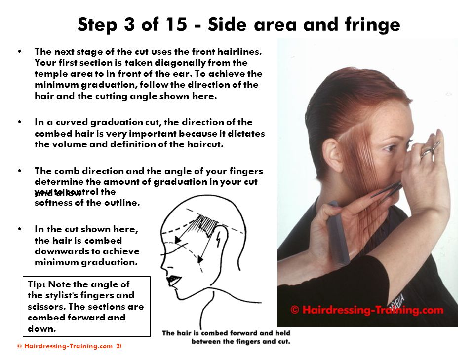 © Hairdressing-Training.com 2004 Step 3 of 15 - Side area and fringe The next stage of the cut uses the front hairlines. Your first section is taken d