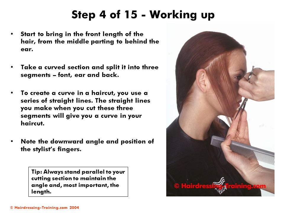 © Hairdressing-Training.com 2004 Step 4 of 15 - Working up Start to bring in the front length of the hair, from the middle parting to behind the ear.