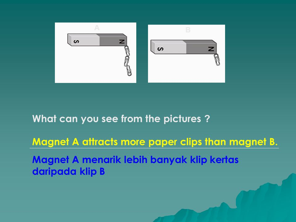What can you see from the pictures .Magnet A attracts more paper clips than magnet B.