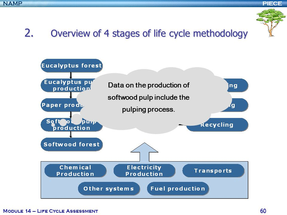 PIECENAMP Module 14 – Life Cycle Assessment 59 2. Overview of 4 stages of life cycle methodology This subsystem includes pine growth and pine harvesti