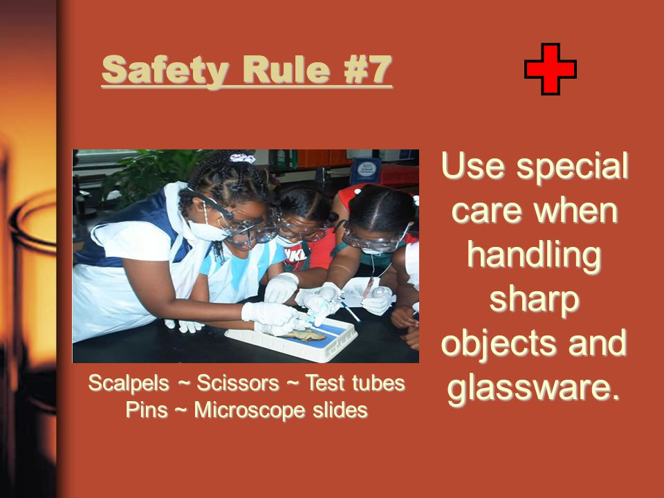 Safety Rule #7 Use special care when handling sharp objects and glassware. Scalpels ~ Scissors ~ Test tubes Pins ~ Microscope slides Safety Rule #7