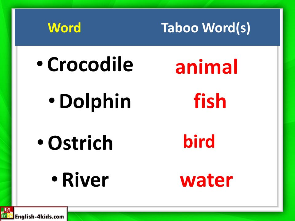 Crocodile animal Dolphinfish Ostrich bird River water