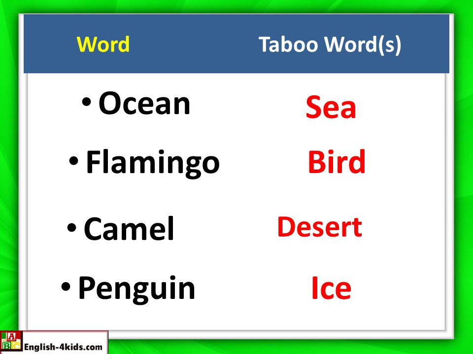 Ocean Sea FlamingoBird Camel Desert Penguin Ice