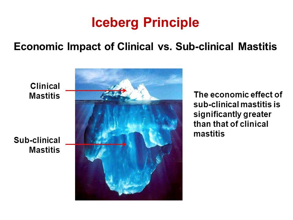 Iceberg Principle Economic Impact of Clinical vs. Sub-clinical Mastitis Clinical Mastitis Sub-clinical Mastitis The economic effect of sub-clinical ma