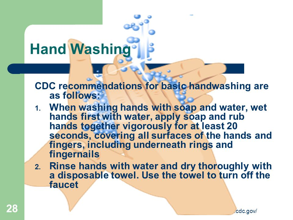 http://www.cdc.gov/ 28 Hand Washing CDC recommendations for basic handwashing are as follows: 1. When washing hands with soap and water, wet hands fir