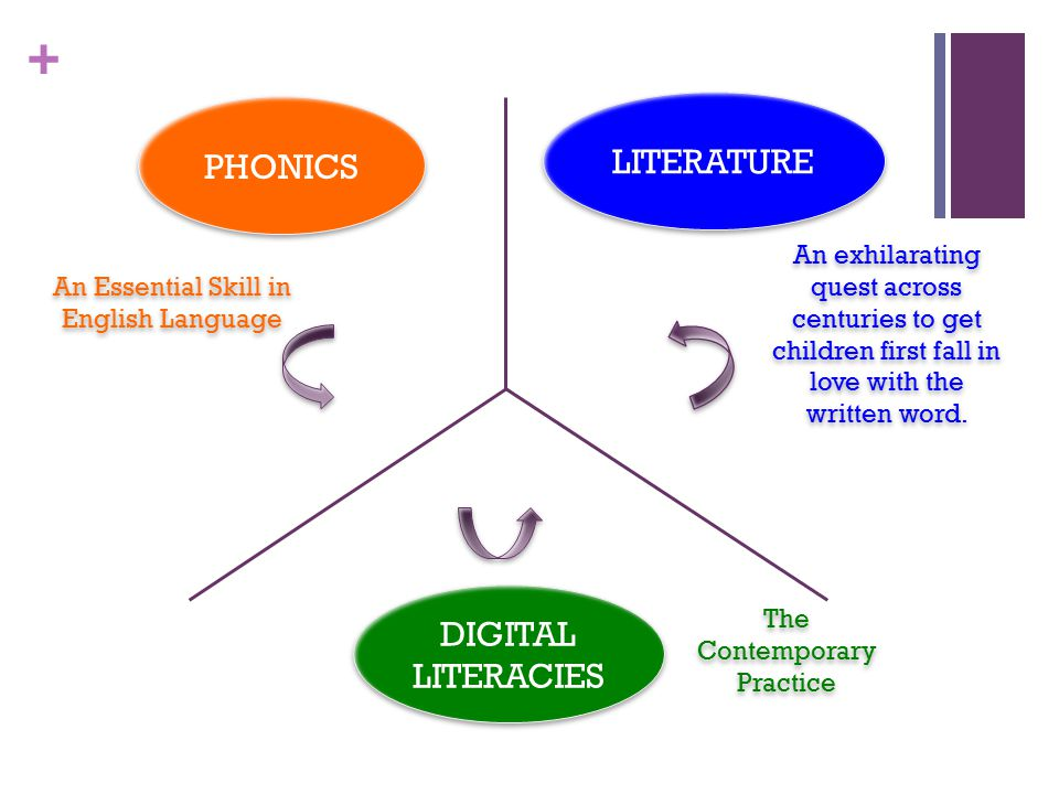 + PHONICS DIGITAL LITERACIES LITERATURE An Essential Skill in English Language An exhilarating quest across centuries to get children first fall in love with the written word.