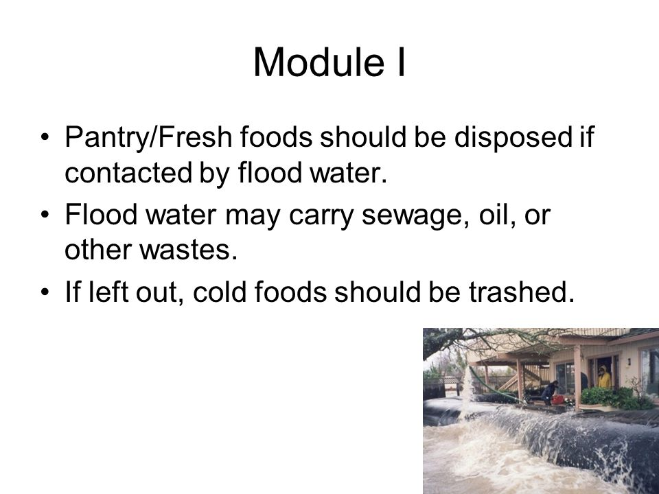 Module I Pantry/Fresh foods should be disposed if contacted by flood water.