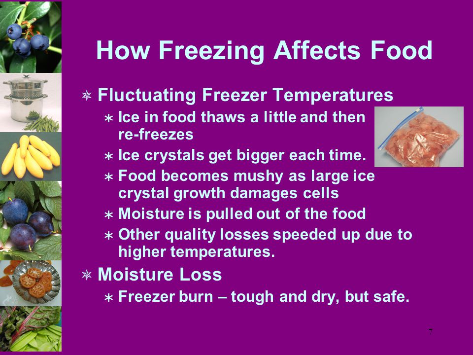 7 How Freezing Affects Food  Fluctuating Freezer Temperatures  Ice in food thaws a little and then re-freezes  Ice crystals get bigger each time.