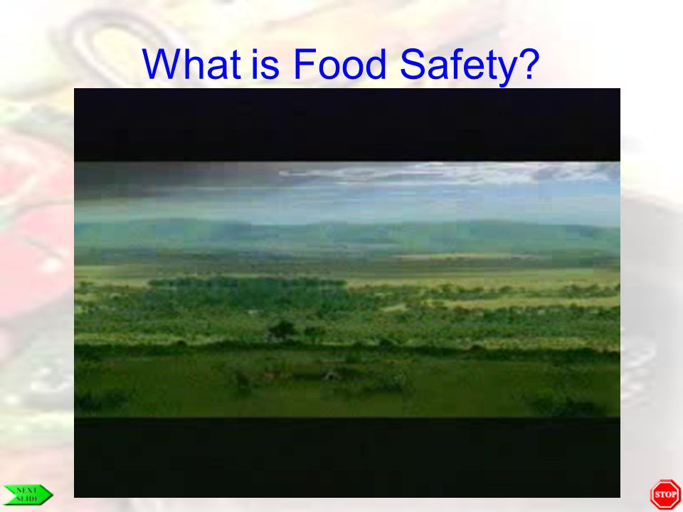 HACCP Receiving and Storage If you notice any signs of infestation, do not wait; call a pest control service immediately.