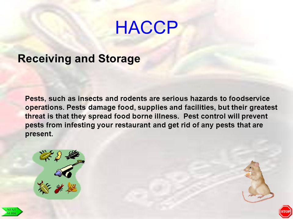 HACCP Receiving and Storage Pests, such as insects and rodents are serious hazards to foodservice operations. Pests damage food, supplies and faciliti