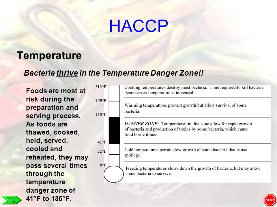 HACCP Temperature Bacteria thrive in the Temperature Danger Zone!! Foods are most at risk during the preparation and serving process. As foods are tha